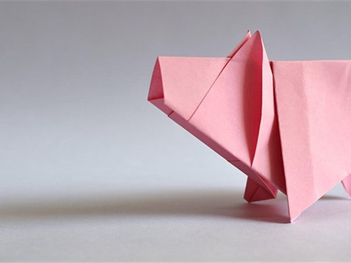 Virtual Introduction to Oragami For All Ages