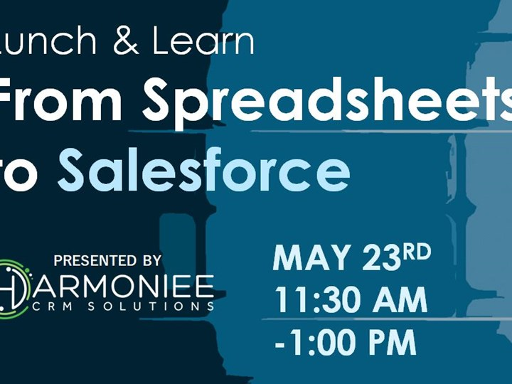 From Spreadsheets to Salesforce
